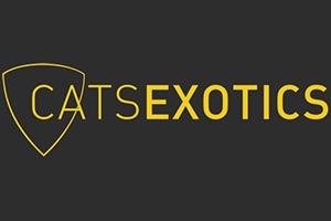 Cats Exotics
